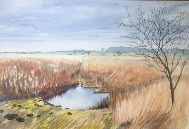 Reeds and Pool by Rita Browne