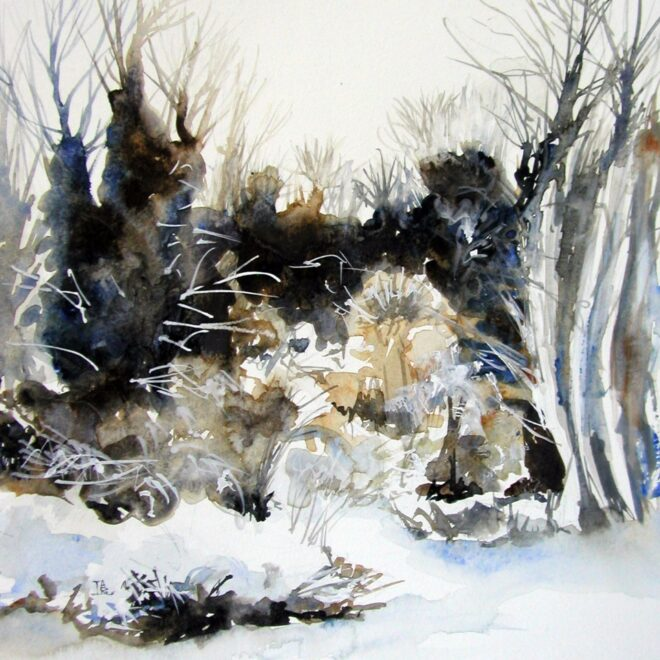 Midwinter frosts