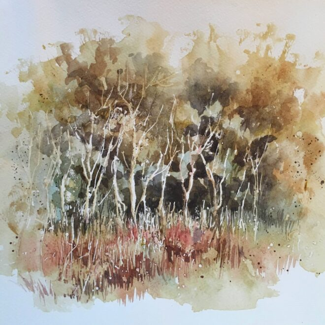 Autumn trees at Wells by Penny Newman (framed)