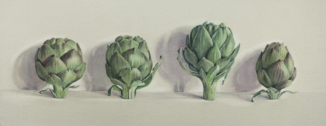 Four artichokes by Lillias August