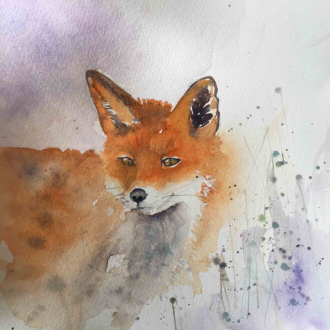 Fox-Breaking-Cover-Helen-Clarke