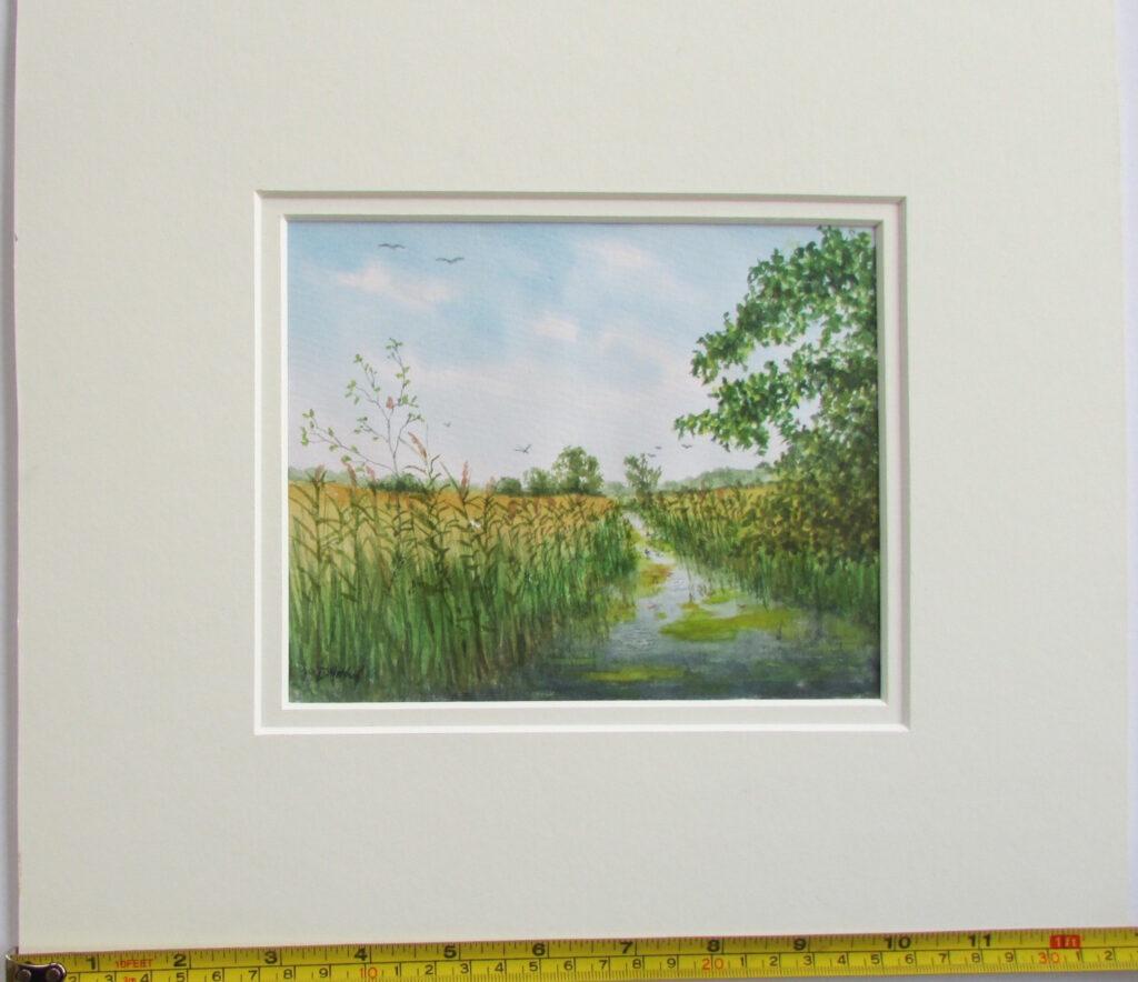 David Mitchell - River Waveney, Redgrave Fen1