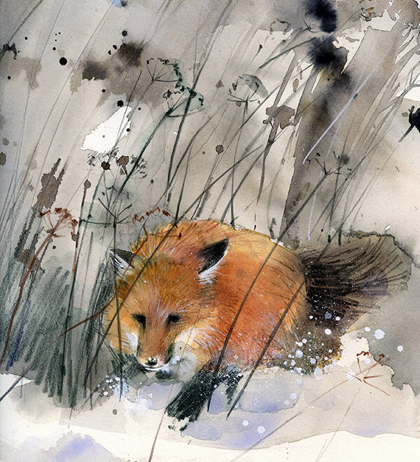 Fox in the snow by Petula Stone