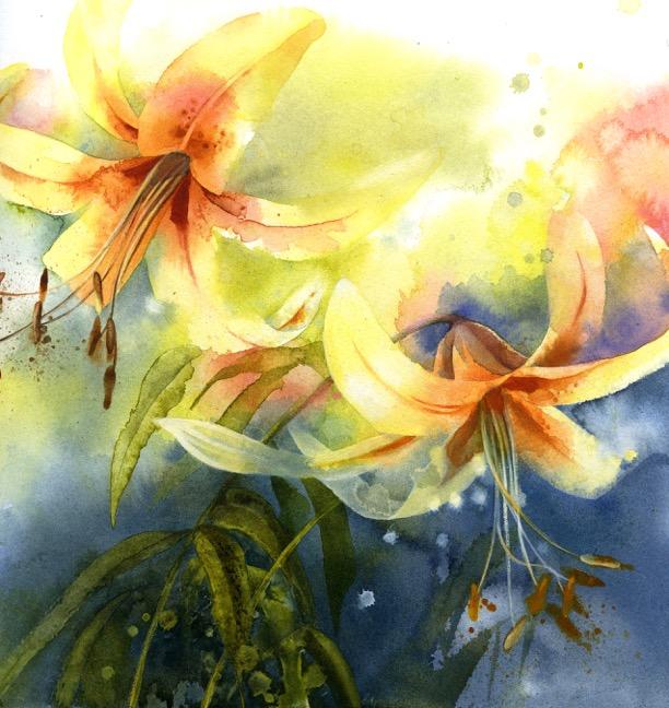 Lilies by Petula Stone