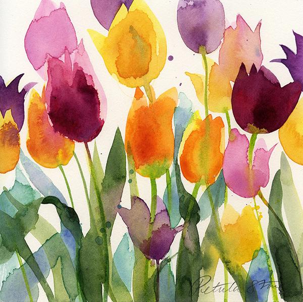 Tulips by Petula Stone