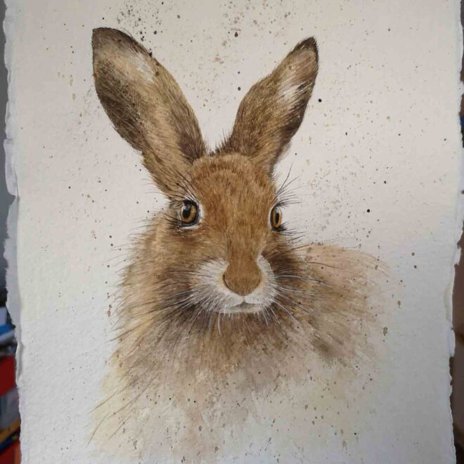 Hare-2-by-Jan-Couling