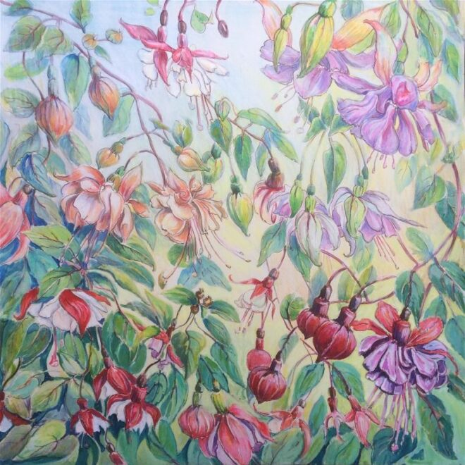 Joannie Sandford-Cook- Sunset Cottage Fuchsias during lockdown