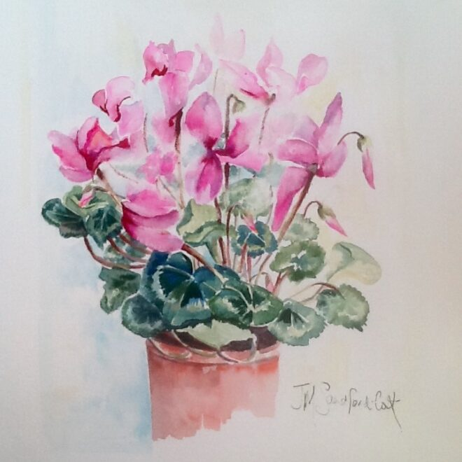 My pot of cyclamens by Joannie Sandford-Cook